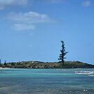 Emily Bay on Norfolk Island by Bev Woodman