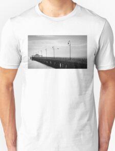 Bird Haven on the Pier T-Shirt