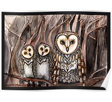 Three barn owls Poster