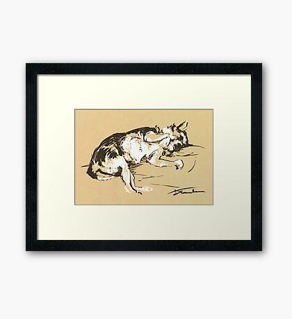 Dan the Dog Framed Print