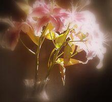 Stargazer Lilies #32 by Dawna Morton