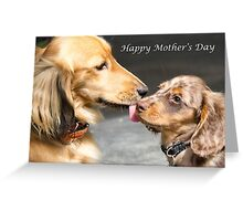 Mother's Love Greeting Card