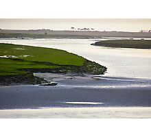 Green on the Swamp Photographic Print
