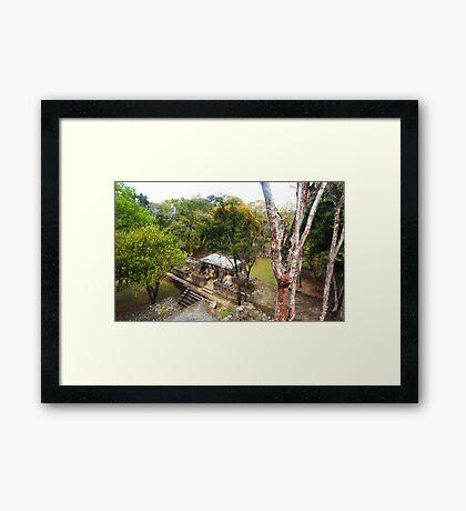 Mayan buildings Framed Print
