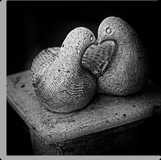 Love Doves by Paul Grinzi