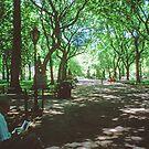 N.Y.C. 9, June 1998 by Priscilla Turner