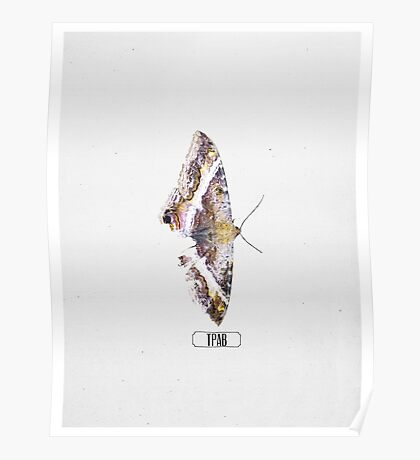 "Kendrick Lamar Graphic ""TO PIMP A BUTTERFLY"" Poster"