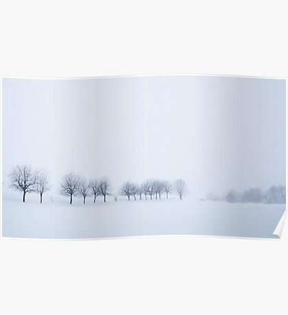 Snowstorm Trees Poster