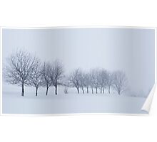 Trees in Snowstorm Poster