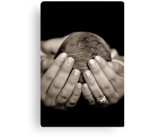 In Safe Hands Canvas Print