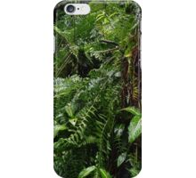 Tropical Forest 07 iPhone Case/Skin