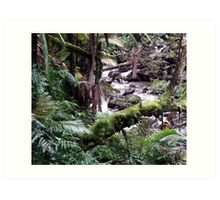 Tropical Forest 09 Art Print