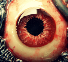 biomechanical eye Sticker