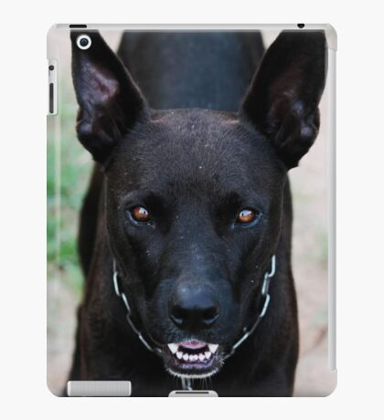 Sam's eyes iPad Case/Skin