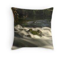 BLURED  WATER Throw Pillow
