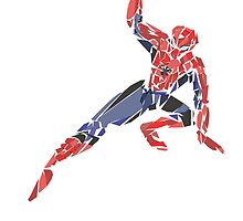 Spiderman by newtegan