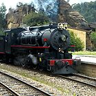 The Zig Zag Railway - Clarence NSW by Phil Woodman