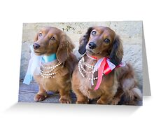 Pretty Puppies Greeting Card