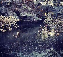 Tokyo flowers original photo by shethatisnau