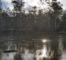 Barham at the Murray 2 by Michelledegroot