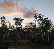 Barham at the Murray 3 by Michelledegroot