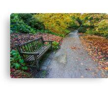 Fall Walks Canvas Print