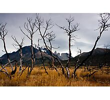 Sunset at Torres del Paine Photographic Print