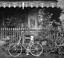 Iron Lace, Fitzroy by Roz McQuillan