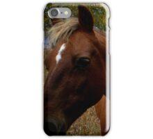 Horses, Grandview Ranch, Kansas iPhone Case/Skin