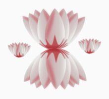 Lotus Petals by tandoor
