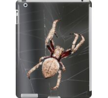 WEB Weaver iPad Case/Skin