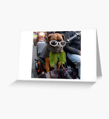 Lucy on Saint Patricks Day parade #1 Greeting Card