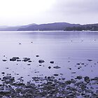 Coniston Water, looking south from its northern shore, English Lake District by Philip Mitchell