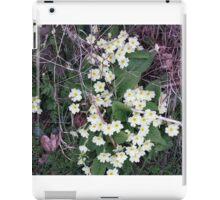 Primroses in the Undergrowth iPad Case/Skin