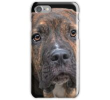 a dog named Lucifer iPhone Case/Skin