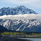 Seward ~ Alaska by Barbara Burkhardt