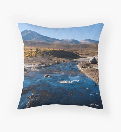 El Tatio geisers Throw Pillow