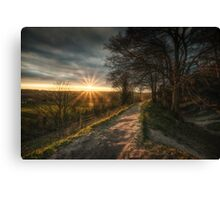 Golden Pathway Canvas Print