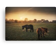 Golden Breakfast Canvas Print