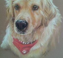 Golden Retriever by Sharon Herbert