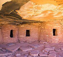 Fallen Roof Ruin, Utah by Tamas Bakos