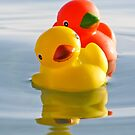 Follow me! Rubber ducks by Sandra O'Connor