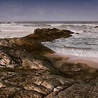 Rocky shelf on ocean shore by Chamika Amarasiri