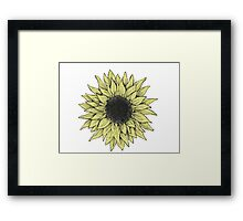 Sunflower Daze Framed Print