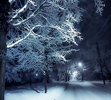 Peaceful Winter Night by Kendall McKernon