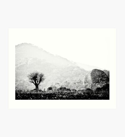 Lone Tree, Malawi Art Print