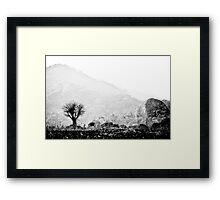 Lone Tree, Malawi Framed Print