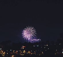 Fireworks in the Magical Kingdom by moomooloops