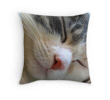 Shhh, Be Very Quiet Throw Pillow