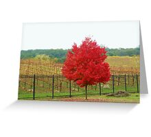 Wine Vineyard Greeting Card